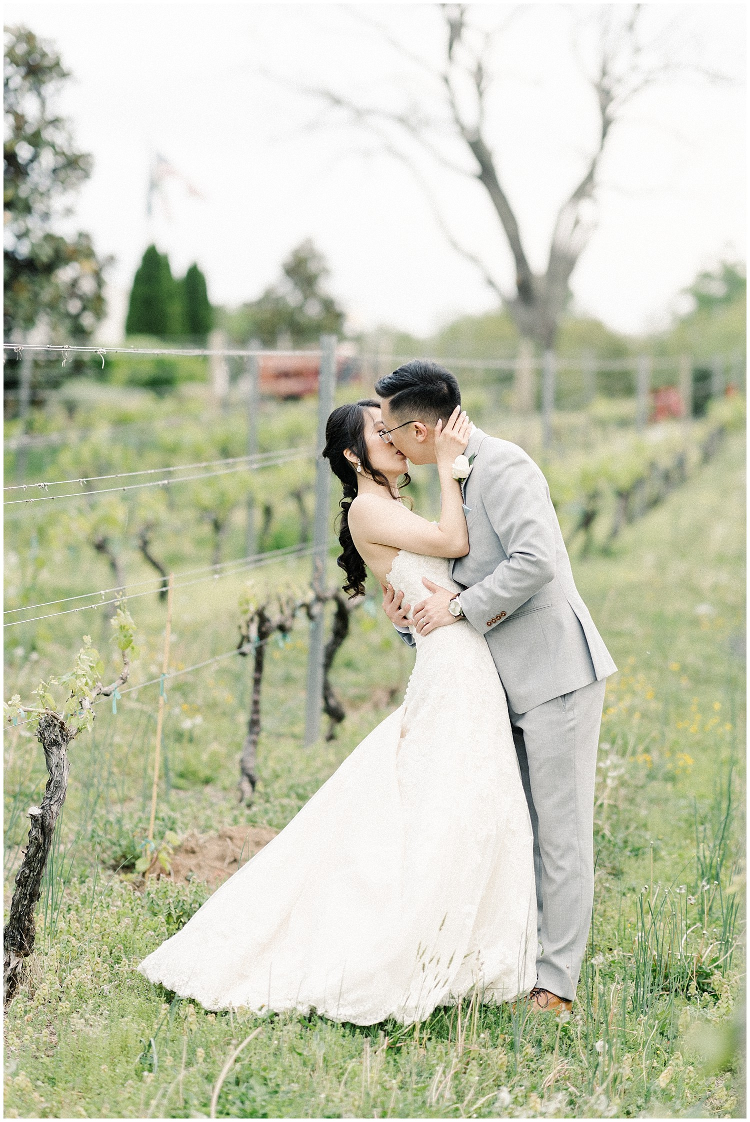 nova-vineyard-wedding_0037.jpg