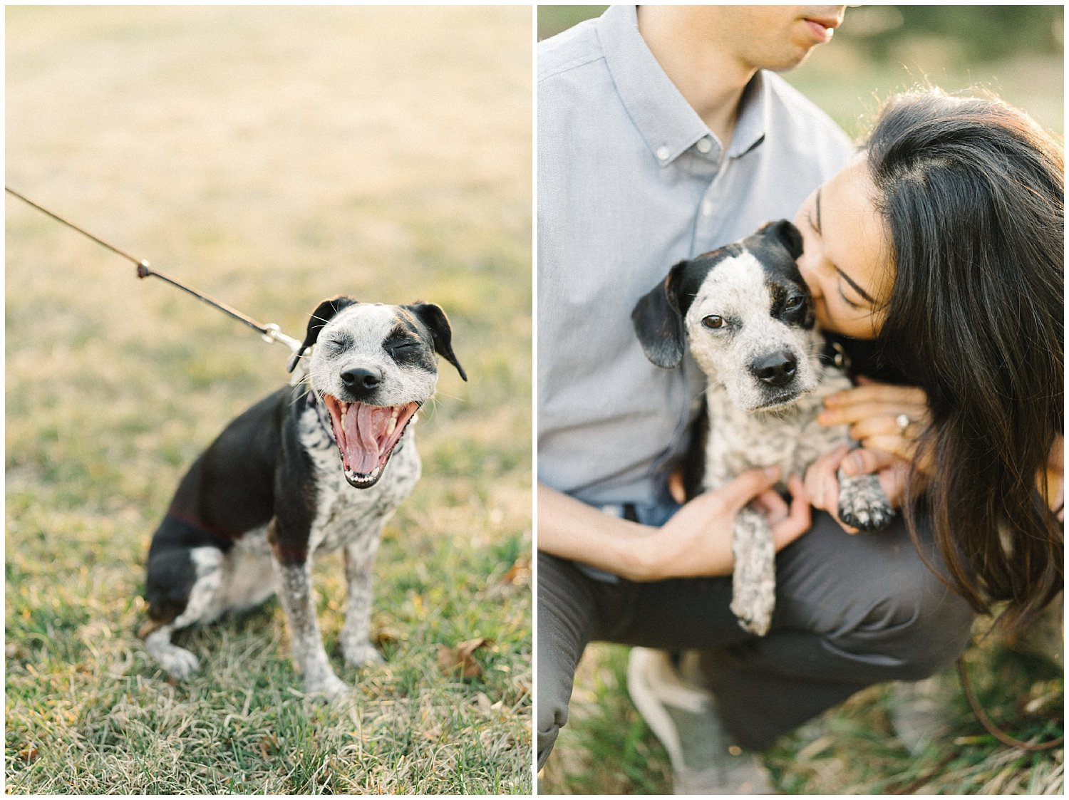 Incorporating dogs into engagement session