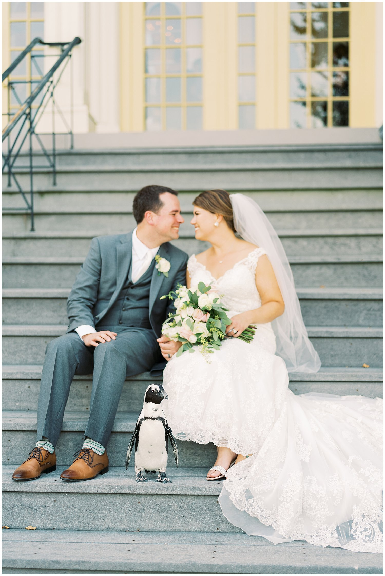 Bride and groom with penguin at Maryland Zoo